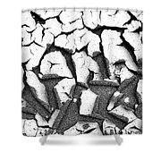 Cracked Earth Shower Curtain by Fabrizio Troiani
