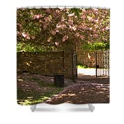 Crichton Church Entrance Gate And Tree In Pink Bloom Shower Curtain