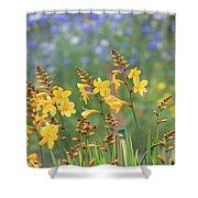 Crocosmia Buttercup Flowers Shower Curtain