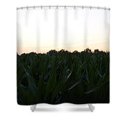 Crops Shower Curtain