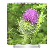 Crown Thistle Shower Curtain