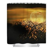 Crows Nest Full Moon Shower Curtain