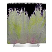 Crystalized Cacti Spears 2b Shower Curtain
