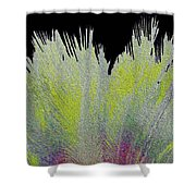 Crystalized Cacti Spears 2c Shower Curtain
