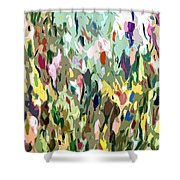 Curious Display Shower Curtain