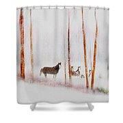 Curious Visitors Shower Curtain