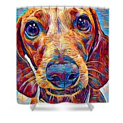 Dachshund 6 Shower Curtain