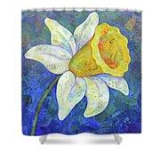Daffodil Festival I Shower Curtain