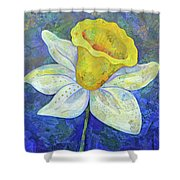 Daffodil Festival II Shower Curtain
