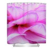 Dahlia 3 Shower Curtain