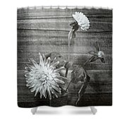 Dahlia Grouping Shower Curtain