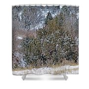 Dakota West In Winter Shower Curtain