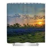 Daybreak In The Land Of Bluebonnets Shower Curtain
