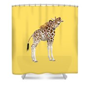 Daydreaming Of Giraffes Png Shower Curtain