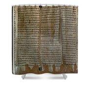 Dead Sea Scroll Shower Curtain