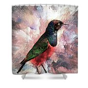 Desaturated Starling Shower Curtain