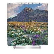 Desert Sand Verbena, Desert Sunflower Shower Curtain
