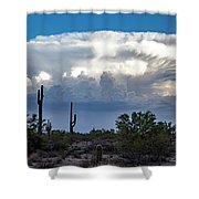 Portait Of A Thunderstorm Shower Curtain