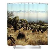 Desert Winter 1 Shower Curtain
