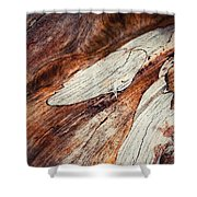 Detail Of Abstract Shape On Old Wood Shower Curtain