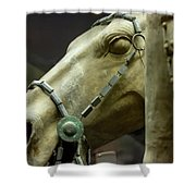 Details Of Head Of Horse From Terra Cotta Warriors, Xian, China Shower Curtain