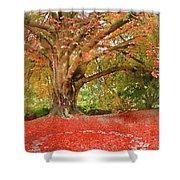 Digital Watercolor Painting Of Beautiful Autumn Fall Nature Fair Shower Curtain