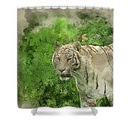 Digital Watercolor Painting Of Beautiful Portrait Image Of Hybri Shower Curtain