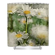 Digital Watercolor Painting Of Wild Daisy Flowers In Wildflower  Shower Curtain