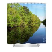 Dismal Swamp Canal In Spring Shower Curtain