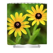 Double Daisies Shower Curtain