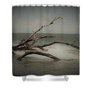 Drifting Along With The Tide Shower Curtain