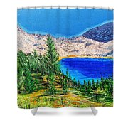 Duck Pass Shower Curtain by Kevin Daly