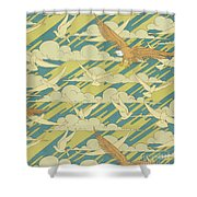 Eagles And Pigeons Shower Curtain