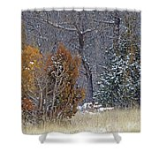 Early Winter On The Western Edge Shower Curtain by Cris Fulton