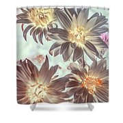 Electric Beauty Shower Curtain