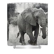 Elephant And Babies Shower Curtain
