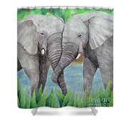 Elephant Couple Shower Curtain
