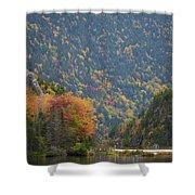 Elephant Head Autumn Shower Curtain