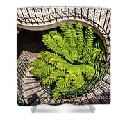 Embarcadero Stairway Shower Curtain by Kate Brown