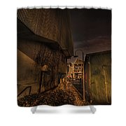 Emily Carr Alley Shower Curtain by Juan Contreras