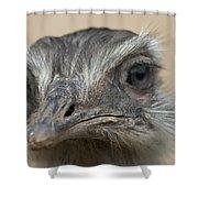 Emu Print 9053 Shower Curtain