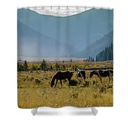 Equine Valley Shower Curtain