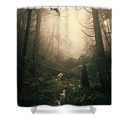 Escaping Chaos Shower Curtain