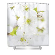 Ethereal Blossoms Shower Curtain