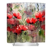 Everything About Poppies Shower Curtain