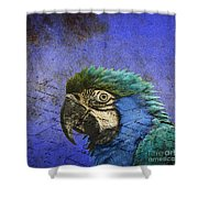 Blue Exotic Parrot- Pirates Of The Caribbean Shower Curtain