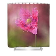 Exquisite Appeal Shower Curtain