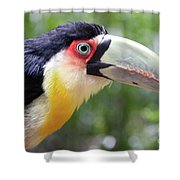 Eye On Eye Shower Curtain
