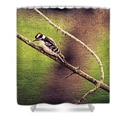 Faded Canvas Woodpecker Shower Curtain