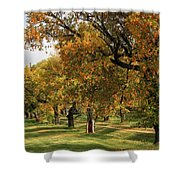 Fall Ave Shower Curtain